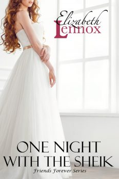 One-Night-with-the-Sheik-cover-2-1-904x1268