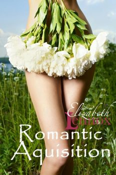 Romantic Acquisition by Elizabeth Lennox